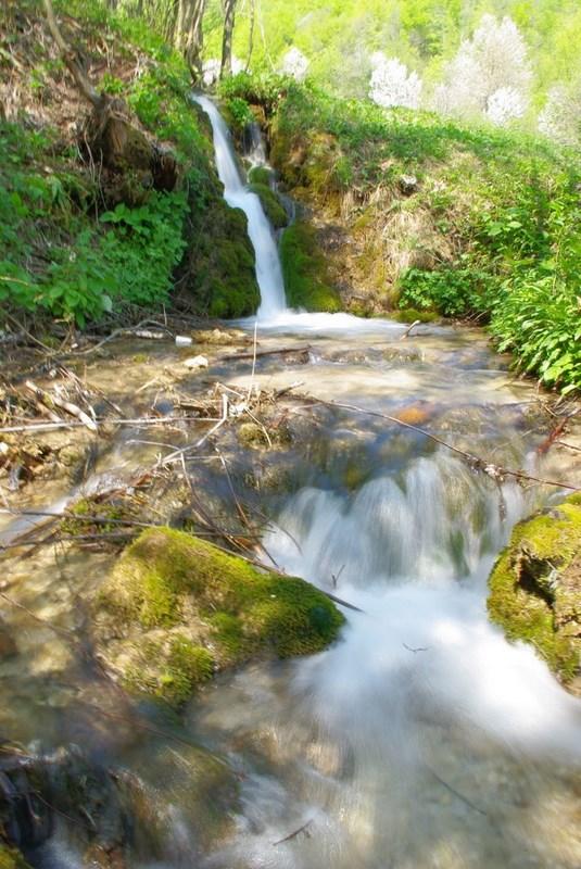 Stvaranje sedre na potoku